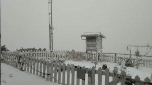 【新聞】玉山主峰、北峰於今(24)早降雪,路面有積雪或結冰現象,前往登山之山友須格外注意安全
