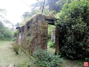 【新北市】東勢格(瓜寮坑溪)越嶺古道