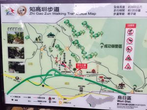 180915貓仔們漫步烏日知高圳步道