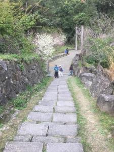 福山古道連接米洋溪和湖底溪,取名迷糊