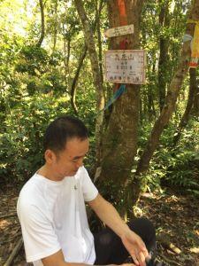 保慶宮初登美鹿南峰