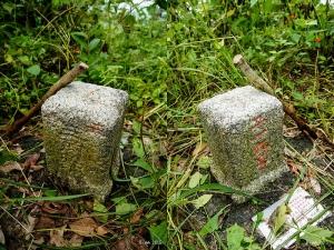 【台南】岩子頂山