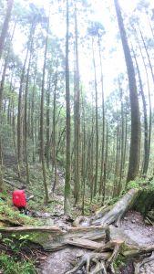 宜蘭-松蘿湖-第一次野營就上手