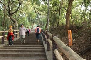 20170107台灣桃園虎頭山步道