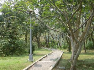 富陽生態公園.福州山