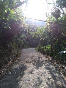 1061230龍麟山步道