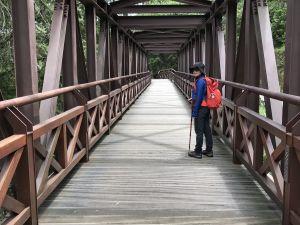 阿里山塔山步道