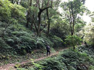 嘉南雲峰(北側步道入口)石壁山、好望角