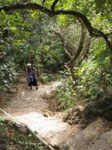 南壽山步道登小百岳