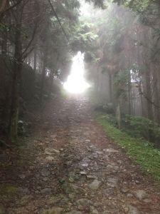 台灣小百岳#030-五指山