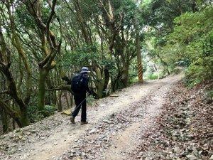 尾寮山16.8公里