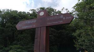 大屯自然公園輕旅行