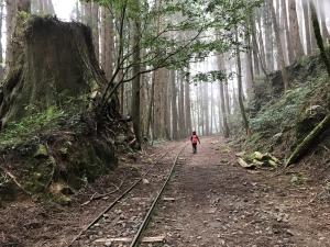 特富野的鐵道與旅人