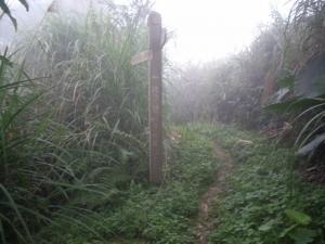 【台南】梅峰、竹子尖山