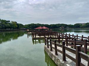 天鵝湖環保水上公園環湖步道