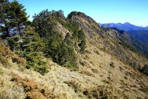 卓社大山 18連峰