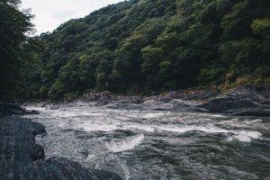 野溪-泰崗溫泉