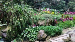 白鷺鷥步道。大溝溪步道。圓覺寺步道