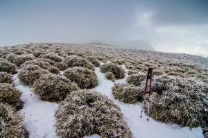 奇萊南華 尋雪