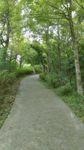 新莊青年公園步道