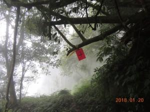 隆田產業道路登鳳凰山