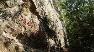 靜謐清幽的獅頭山(小百岳#29)古道一日遊