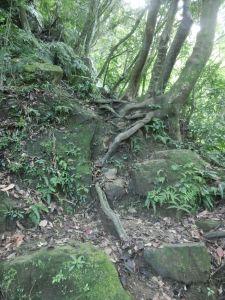 猴山岳步道