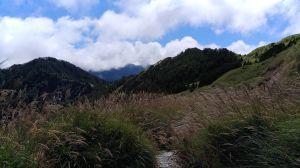 美麗山谷~~小奇萊山!