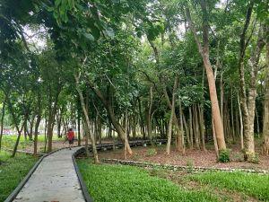 新威森林公園步道