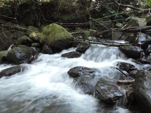 三峽-雲森瀑布
