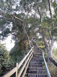 彰化社頭清水岩步道群O型20181111