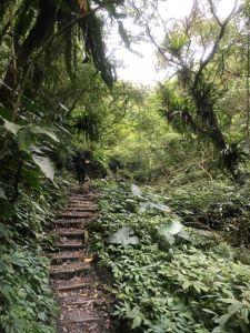 聖母山莊步道