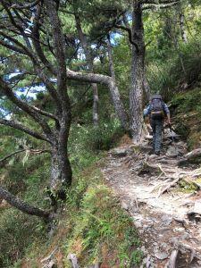 玉山-高山初體驗