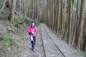 特富野古道+梯子板山