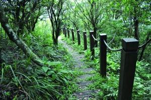 【書摘】《大台北自然步道100(2)》-耳空龜山