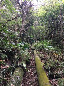 淡水-巴拉卡水管路上向天池下北投