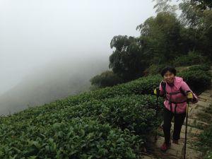 2017-12-9雲嘉五連峰