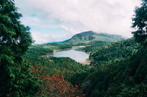 宜蘭太平山-翠峰湖環山步道
