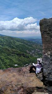 燦光寮山、黃金三稜