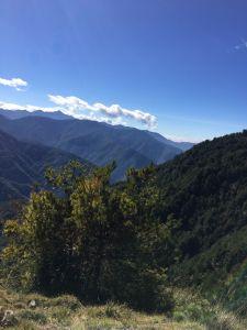 1061231麟趾山.鹿林山