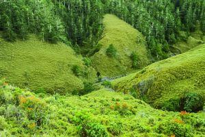 中央山脈最深遠的秘境-南三段