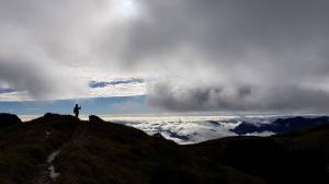 入門百岳-能高越嶺西段登奇萊南峰、南華山