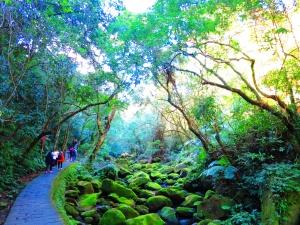 台北內湖碧山路步道