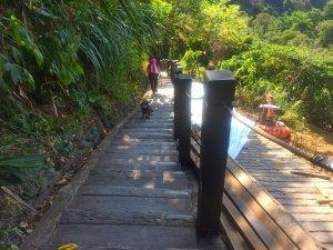走走三汀山--從一江橋旁起登