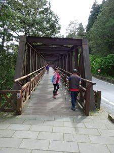 台灣小百岳第59座-嘉義阿里山-大塔山