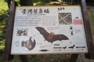 170816福山植物園