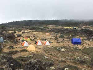 非洲最高峰吉力馬札羅山攻頂紀實