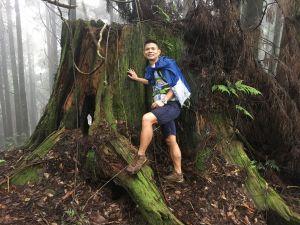交融雨水汗水的美景-忘憂森林.金柑樹山.杉林溪O型縱走