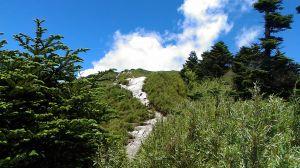 合歡山主峰、東峰、石門山及合歡尖山之行