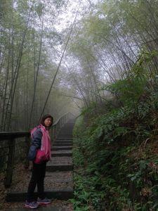 20180130 孝子路步道